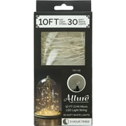 10ft 30 Soft White String Lights with Timer (60200)