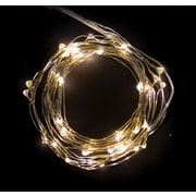20ft 60 Soft White String Lights with Timer (59689)