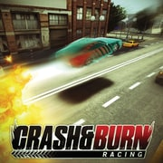 Crash and Burn Racing for Windows (1 User) [Download]