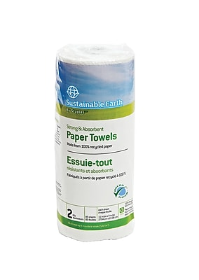 Sustainable Earth by Staples® Paper Towels, 2-Ply, White, 85 Sheets, 30 Rolls/Case (SEB51861)