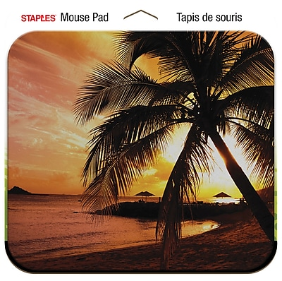Staples Sunset Palm Hammock Mouse Pad
