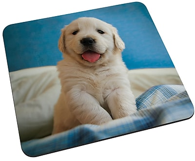 Staples Golden Retriever Puppy Mouse Pad