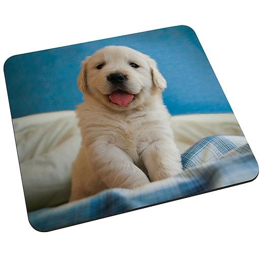 Staples Golden Retriever Puppy Mouse Pad