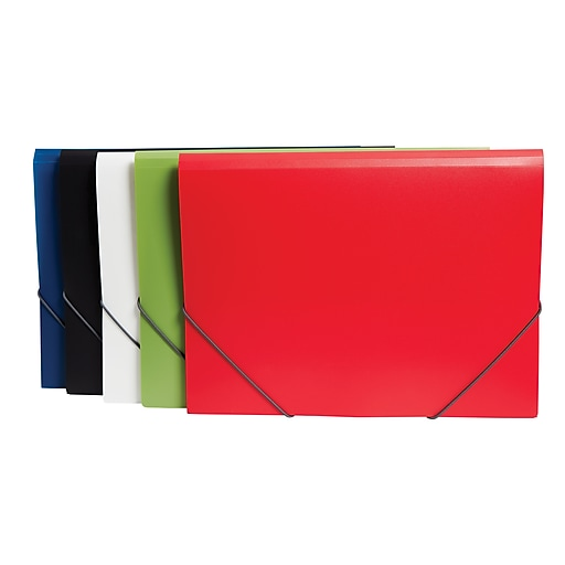 Staples Tri-Fold Plastic Folder, Letter Size, Assorted Colors (51846)
