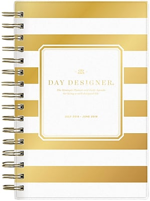 2018-2019 Day Designer for Blue Sky 5x8 Daily/Monthly Planner, Gold Stripe (108322)