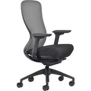 Ayalon Black Fabric Seat Gargoyle Mesh Task Chair