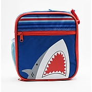 Pep Rally Lunch Bag, Multicolor (58854)