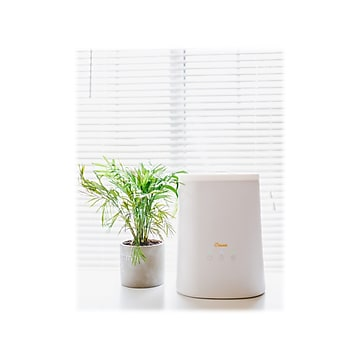 Crane 2-in-1 Top Fill Ultrasonic Cool Mist Humidifier & Essential Oil Diffuser, 1.2 Gal., White (EE-6909)