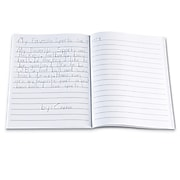 """Learning Resources Writing Hardcover Journals, 9"""" x 7"""", 10/Set (LER3467)"""