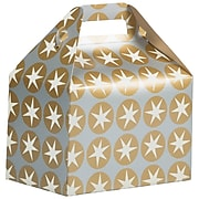 JAM PAPER Gable Gift Box with Handle, Medium, 4 x 8 x 5 1/4, Silver & Gold Stars Design