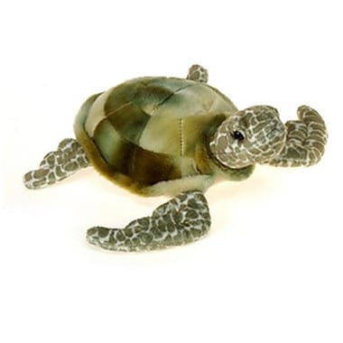 DDI 8 in. Turtle with Picture Hangtag (DLR349096)