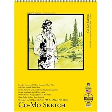 Bee Paper 18 x 24 in. Co - Mo Sketch Pad (LVN3986)
