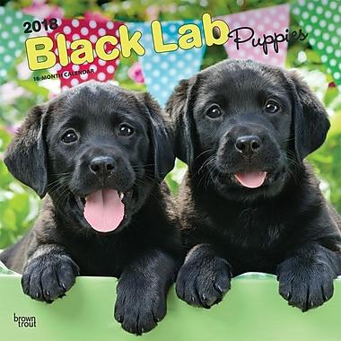 Black Labrador Retriever Puppies 2018 12 x 12 Inch Square Wall Calendar