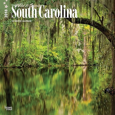 South Carolina, Wild & Scenic 2018 12 x 12 Inch Monthly Square Wall Calendar