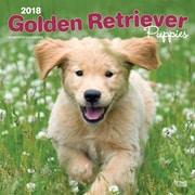 Golden Retriever Puppies 2018 12 x 12 Inch Square Wall Calendar