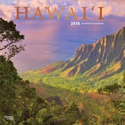 Hawaii 2018 12 x 12 Inch Monthly Square Wall Calendar with Foil Stamped Cover