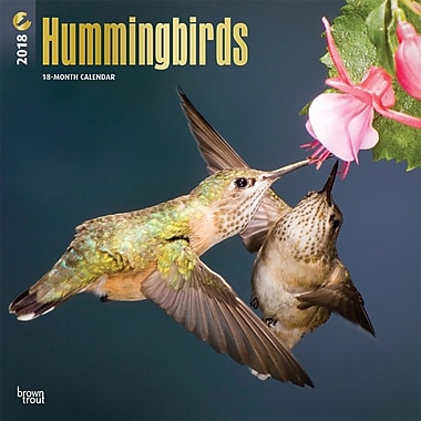 Hummingbirds 2018 12 x 12 Inch Square Wall Calendar with Foil Stamped Cover