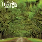 Georgia, Wild & Scenic 2018 12 x 12 Inch Monthly Square Wall Calendar