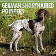 German Shorthaired Pointers 2018 12 x 12 Inch Square Wall Calendar with Foil Stamped Cover