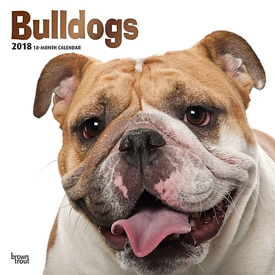 Bulldogs 2018 12 x 12 Inch Square Wall Calendar with Foil Stamped Cover