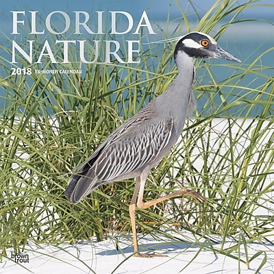 Florida Nature 2018 12 x 12 Inch Monthly Square Wall Calendar