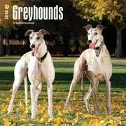 Greyhounds 2018 12 x 12 Inch Square Wall Calendar