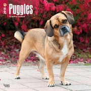 Puggles 2018 12 x 12 Inch Square Wall Calendar