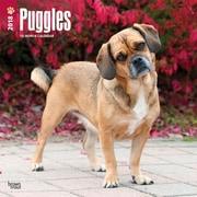 Puggles 2018 12 x 12 Inch Square Wall Calendar