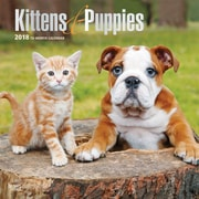 Kittens & Puppies 2018 12 x 12 Inch Square Wall Calendar with Foil Stamped Cover