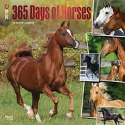 365 Days of Horses 2018 12 x 12 Inch Square Wall Calendar with Foil Stamped Cover