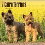 Cairn Terriers 2018 12 x 12 Inch Square Wall Calendar