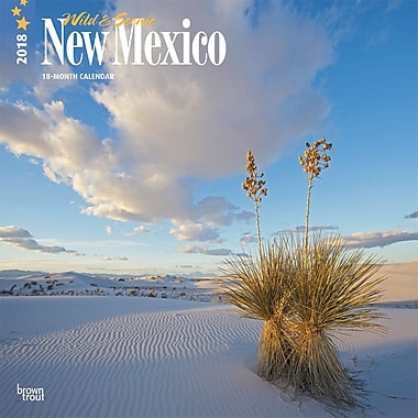 New Mexico, Wild & Scenic 2018 12 x 12 Inch Monthly Square Wall Calendar