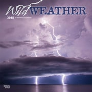 Wild Weather 2018 12 x 12 Inch Square Wall Calendar with Foil Stamped Cover