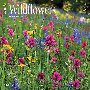 Wildflowers 2018 12 x 12 Inch Monthly Square Wall Calendar