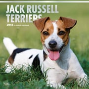 Jack Russell Terriers 2018 12 x 12 Inch Square Wall Calendar with Foil Stamped Cover