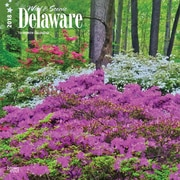 Delaware, Wild & Scenic 2018 12 x 12 Inch Monthly Square Wall Calendar