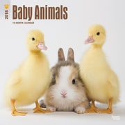 Baby Animals 2018 12 x 12 Inch Square Wall Calendar