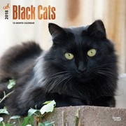 Black Cats 2018 12 x 12 Inch Square Wall Calendar with Foil Stamped Cover