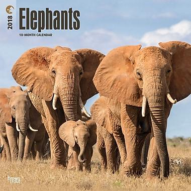 Elephants 2018 12 x 12 Inch Square Wall Calendar