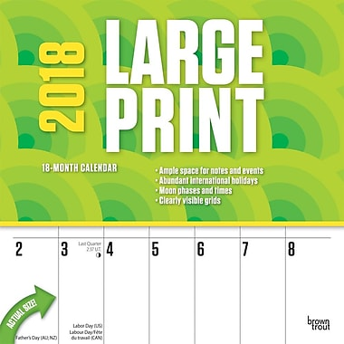 Large Print 2018 12 x 12 Inch Monthly Square Wall Calendar