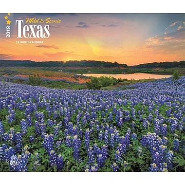 Texas, Wild & Scenic 2018 12 x 14 Inch Monthly Deluxe Wall Calendar