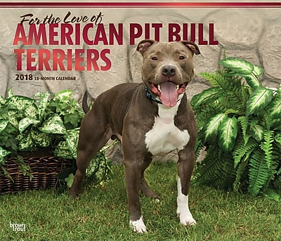 American Pit Bull Terriers 2018 14 x 12 Inch Monthly Deluxe Wall Calendar