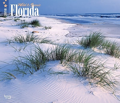 Florida, Wild & Scenic 2018 12 x 14 Inch Monthly Deluxe Wall Calendar