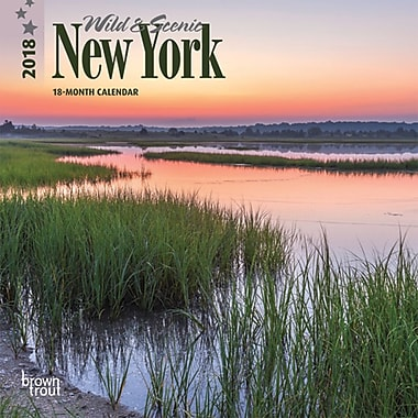 New York, Wild & Scenic 2018 7 x 7 Inch Monthly Mini Wall Calendar