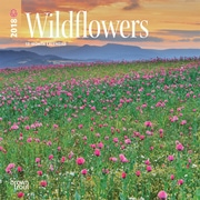 Wildflowers 2018 7 x 7 Inch Monthly Mini Wall Calendar