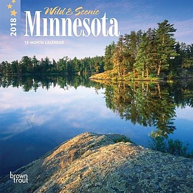 Minnesota, Wild & Scenic 2018 7 x 7 Inch Monthly Mini Wall Calendar