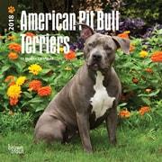 American Pit Bull Terriers 2018 Mini 7 x 7 Inch Wall Calendar