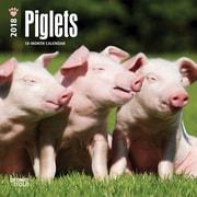 Piglets 2018 Mini 7 x 7 Inch Wall Calendar