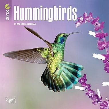 Hummingbirds 2018 Mini 7 x 7 Inch Wall Calendar