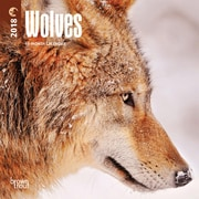 Wolves 2018 Mini 7 x 7 Inch Wall Calendar